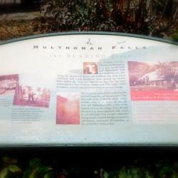 Multnomah Falls board