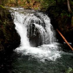 Multnomah Falls from Top