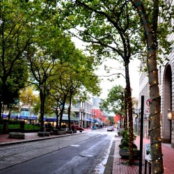 Portland downtown streets