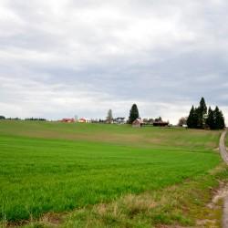 Scenic routes around Cornelius Pass Road