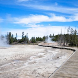 Old Faithful Geyser area @ Yellowstone National Park