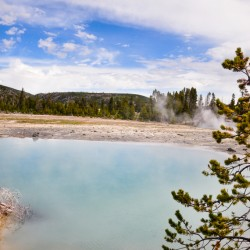 Amazing hot springs @ Yellowstone National Park