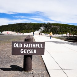 Old Faithful Geyser @ Yellowstone National Park